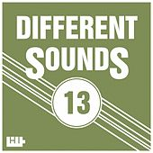 Play & Download Different Sounds, Vol.13 by Various Artists | Napster