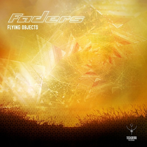 Play & Download Flying Objects by The Faders | Napster