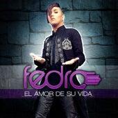 Play & Download El Amor de Su Vida - Single by Fedro | Napster