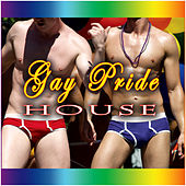 Gay Pride House by Various Artists