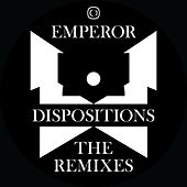 Dispositions - The Remixes von Various Artists