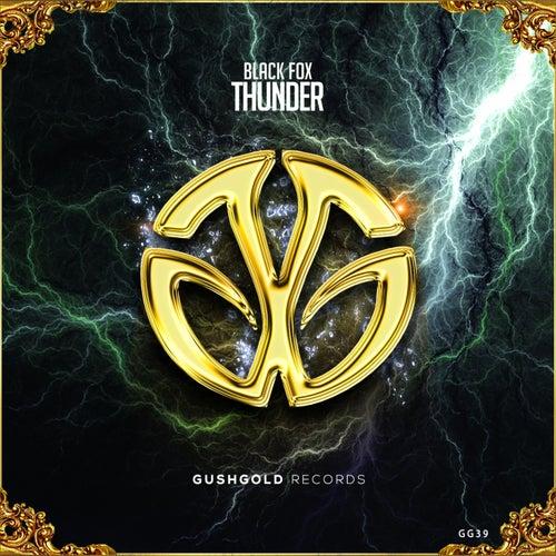 Thunder by Black Fox