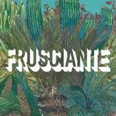 Frusciante by John Frusciante