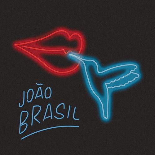 Eu Vou Beijar Essa Flor de João Brasil