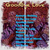 Goodbye Love by Various Artists