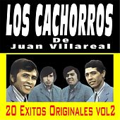 20 Exitos Originales, Vol. 2 by Los Cachorros de Juan Villarreal