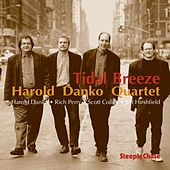 Tidal Breeze by Harold Danko