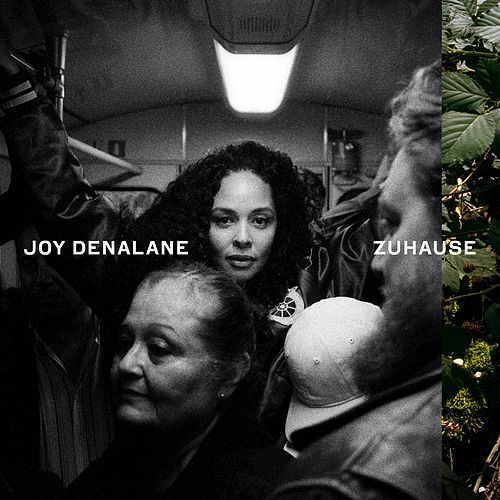 Zuhause by Joy Denalane