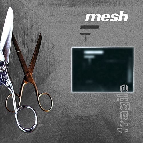 Play & Download Fragile by Mesh | Napster