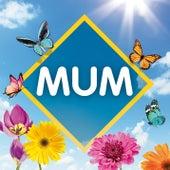 Mum: The Collection van Various Artists
