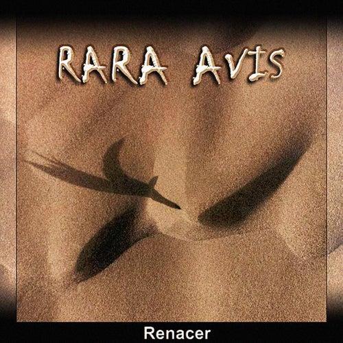 Renacer by RaRa Avis