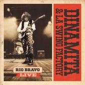 Play & Download Rio Bravo Live by Dinamita | Napster