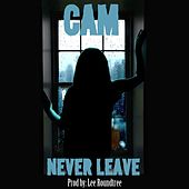 Play & Download Never Leave by Cam | Napster