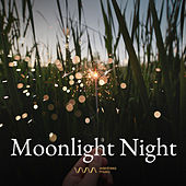 Play & Download Moonlight Night by Various Artists | Napster