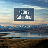 Nature Calm Mind – Soft Music for Relaxation, Nature Sounds, Deep Sleep, Soothing Rain, Singing Birds, Pure Mind by Music For Absolute Sleep