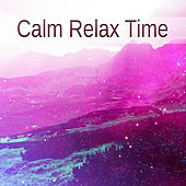 Play & Download Calm Relax Time – Relaxing Music, Soft Sounds of Nature, New Age Music, Relax, Rest, Stress Relief & Reduce Anxiety by The Relaxation | Napster