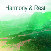 Harmony & Rest – Soft Sounds, Relaxing Music, Stress Free, Inner Journey, Music to Calm Down von Nature Sounds for Sleep and Relaxation