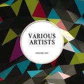 MIcrophone Check von Various Artists