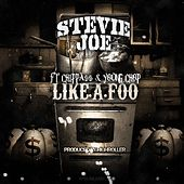 Life a Foo by Stevie Joe