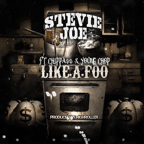 Play & Download Life a Foo by Stevie Joe | Napster