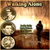 Walking Along von Various Artists