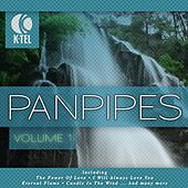 Play & Download Favourite Pan Pipe Melodies - Vol. 1 by Pierre Belmonde | Napster