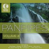 Favourite Pan Pipe Melodies - Vol. 4 by Pierre Belmonde