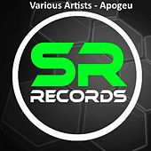 Play & Download Apogeu by Various | Napster