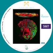 El Resplandor EP by Shakti