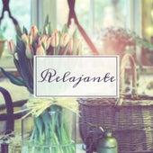 Play & Download Relajante – Música Clásica para la Relajación, Sonidos Instrumentales para el Alivio Profundo, Melodías Tranquilas, Mente Tranquila, Relajarse by Descanse Relajante Masters | Napster