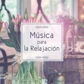 Play & Download Música para la Relajación - Sonidos Relajantes para el Descanso, Sonidos Instrumentalesel Alivio de Tensión, la Música Clásica Después del Trabajo by Musica Relajante Oasis | Napster