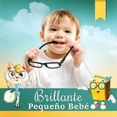 Play & Download Brillante, Pequeño Bebé - Sonidos de Relajación para el Bebé, Cerebro en Crecimiento, Canciones Educativas, Música Clásica para Bebés, Pequeño Genio by Canción de Cuna Bebé  Festival | Napster