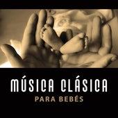 Música Clásica para Bebés – Efecto Einstein, Cerebro en Crecimiento, Canciones Educativas, Sonidos Instrumentales para Niños by Música Bebê Pequena Academia