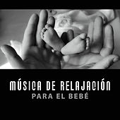Música de Relajación para el Bebé – Canciones Calmantes, Sueño Profundo, Dulces Litros a la Cama, Sueño Pacífico, Bebé Tranquilo by Favorita Música Bebês Clube