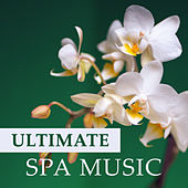 Play & Download Ultimate Spa Music – Echoes of Nature, Calming New Age Music, Spa Moments, Body Harmony, Meditation by Meditation Spa | Napster