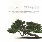 Dut Ağacı by Various Artists