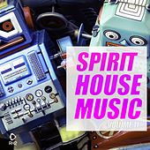 Spirit of House Music, Vol. 11 by Various Artists