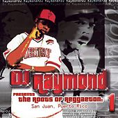Dj Raymond Presents Root of Reggaeton 1 by Various Artists