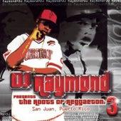Dj Raymond Presents The Roots of Reggaeton 3 von Various Artists