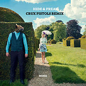 Play & Download Hide and Freak (Crux Pistols Remix) by Sepalot | Napster