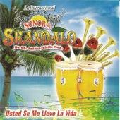Usted Se Me Levo la Vida by Sonora Skandalo