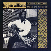 Play & Download These Are My Blues by Big Joe Williams | Napster
