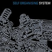 Self Organising System by The System