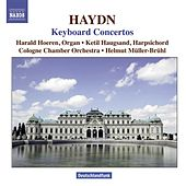 Play & Download HAYDN: Concertos for Harpsichord and Organ by Various Artists | Napster