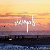 Play & Download Chase Your Bliss by The Mammals | Napster