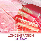 Play & Download Concentration for Exam – Studying Music, Deep Focus, Einstein Effect, Bach, Mozart, Schubert, Instrumental Sounds by Effektive Denken Akademie | Napster