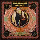 El coro de mi gente (feat. Macaco) de Amparanoia