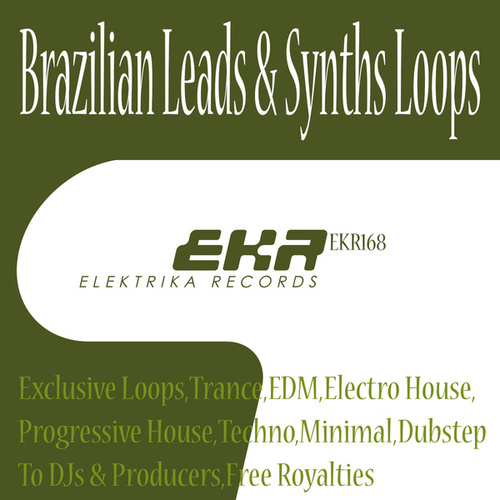 Brazilian Leads & Synths Loops by Supa Man (Kelvin Mccray)