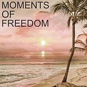 Moments Of Freedom, Vol. 2 (Selection Of Finest Chill Out & Ambient Music) by Various Artists