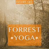 Forrest Yoga, Vol. 2 (Finest In Smooth Electronic Music) by Various Artists